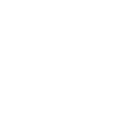 Logo Company Playbook